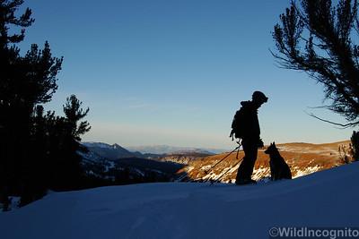 Ski Tour Companions Mammoth Lakes