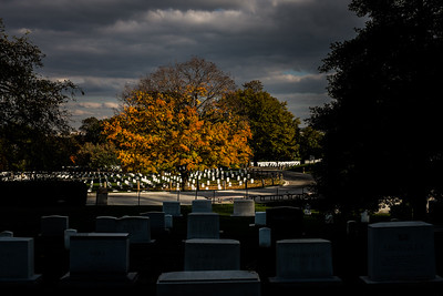 Arlington Cemetery at dusk