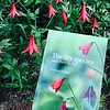 Lilium species guidebook