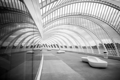 Calatrava's Pergola