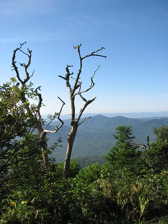 STARK CONTRAST<br /> These two lifeless trees still stand watch over the majestic Appalachian Mountain Range in North Carolina.