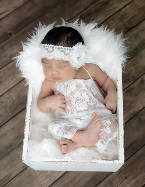 Lexus Marie Newborn-71
