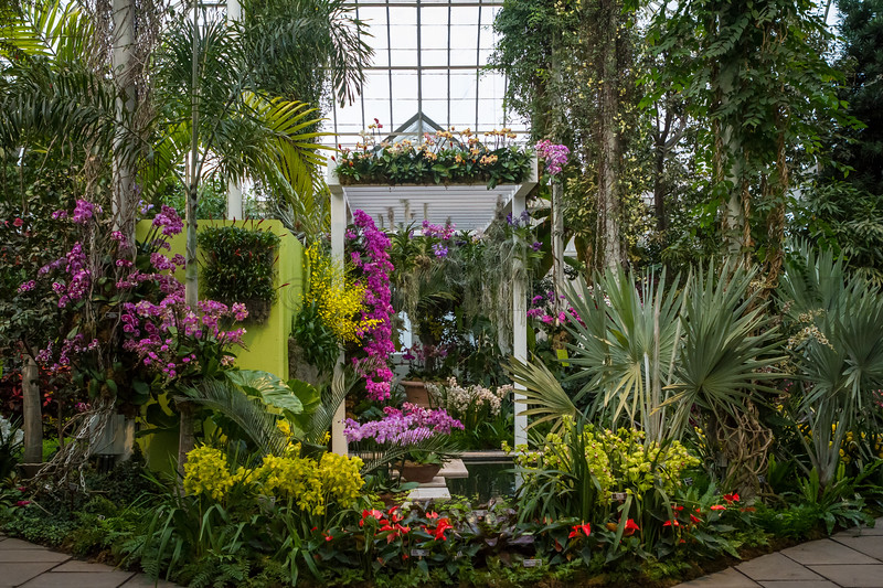 View of the Raymond Jungle Orchid Garden Design