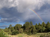 Rainbows in New Mexico are more frequent and more intense than anyplace else.