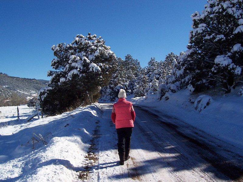 Caroline walks the road in front of the Vadito land (December 2007).
