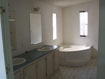 Pre-renovations:  The master bath will be repainted but the vinyl floor here is good so we will keep it.