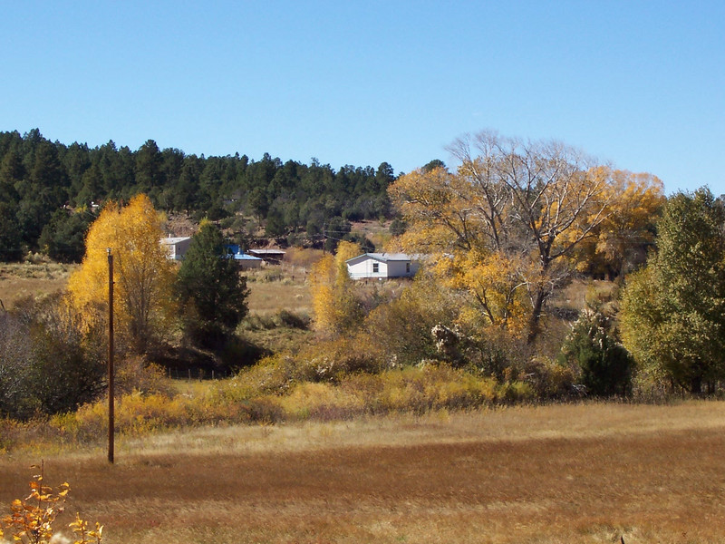 Photo taken from Highway 75. The blue roof partially behind the pine tree is the adobe. The mobile home is partially visible behind the trees to the right.