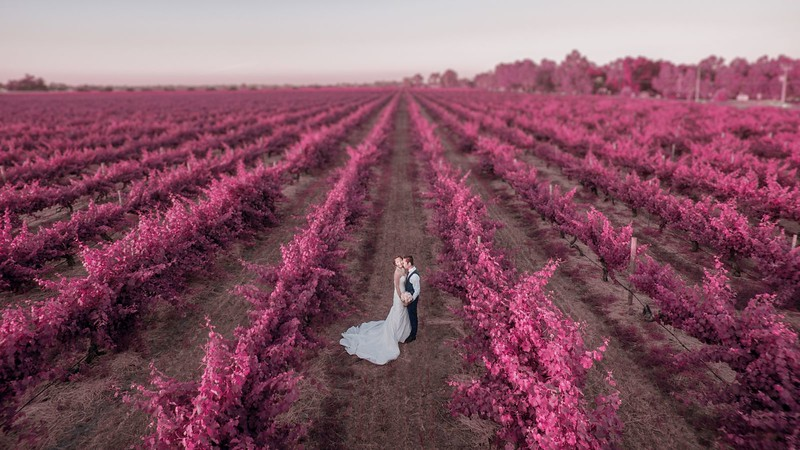 Drone Weddings Swan Valley