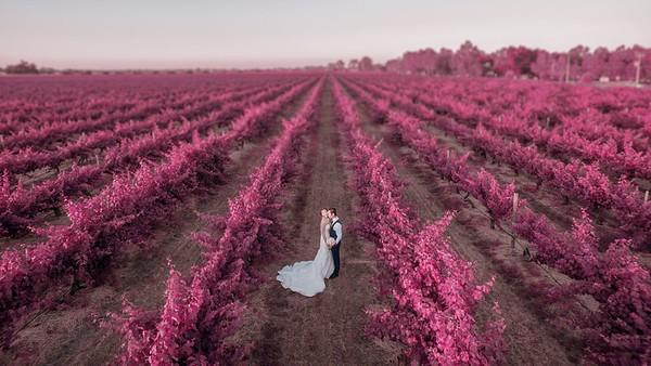 Drone Weddings Swan Valley
