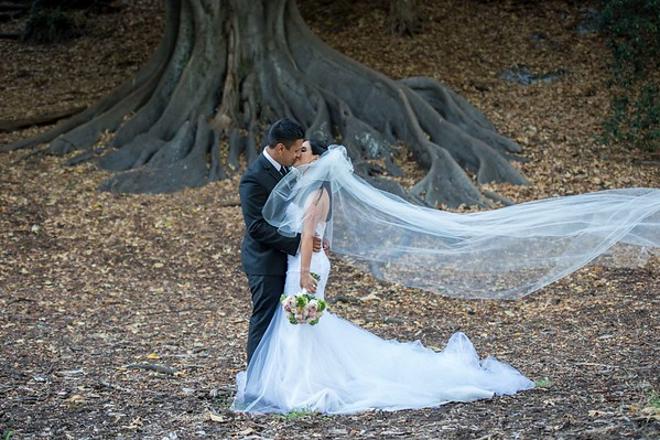 Kings Park Wedd