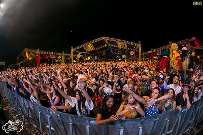 Carnaval do Brasil S/A e Bloco Camarim - 25.02