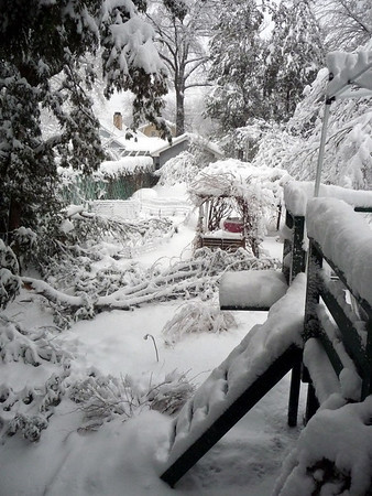 Snow February 26-27, 2010