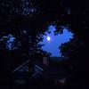 full moon 8/31/12