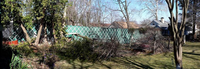 Storm damage March 2010