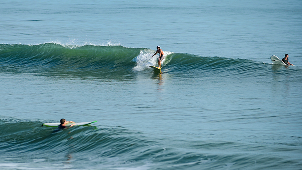 191028 Volusia County Surf Gallery