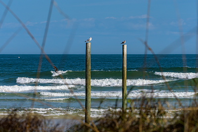 191122 Volusia County Surf Gallery