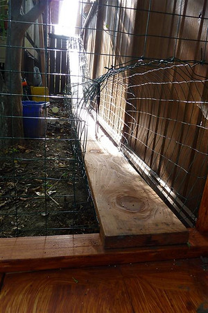 Here's a view from inside the cathouse looking up the cat ramp. At the top of the ramp there is a bridge that runs to the left onto the deck. There is a cat door from the deck into the house so the cats can go in and out whenever they want to.