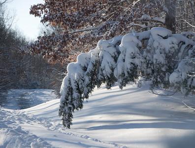 Snow Storm_122009_104012