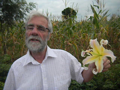 Lilium 'Elusive' With Richard Heery