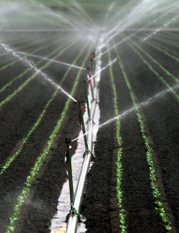 agriculture water photo