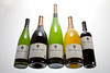 Pessagno Vineyards 003