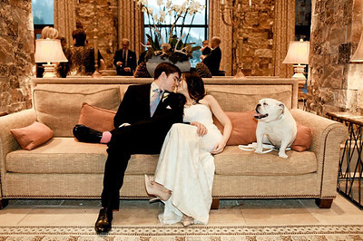 Sweet wedding at St Regis with bride, groom and their fur-kid