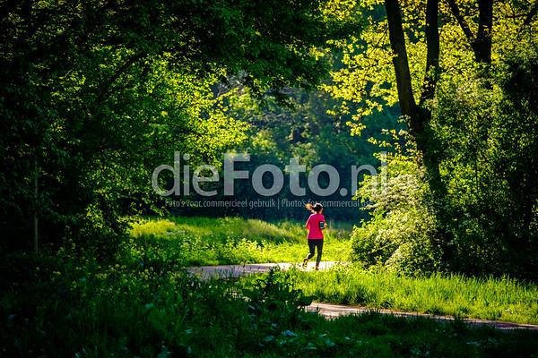 Dame rennend in het Schollebos