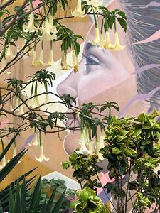 Beautiful Woman Street Art
