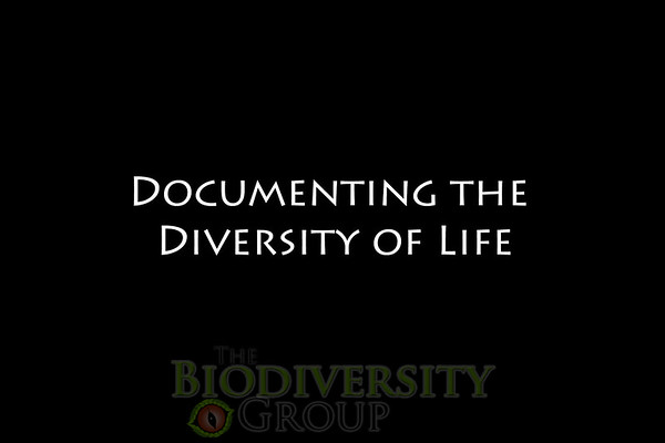 Biodiversity Group, tagline