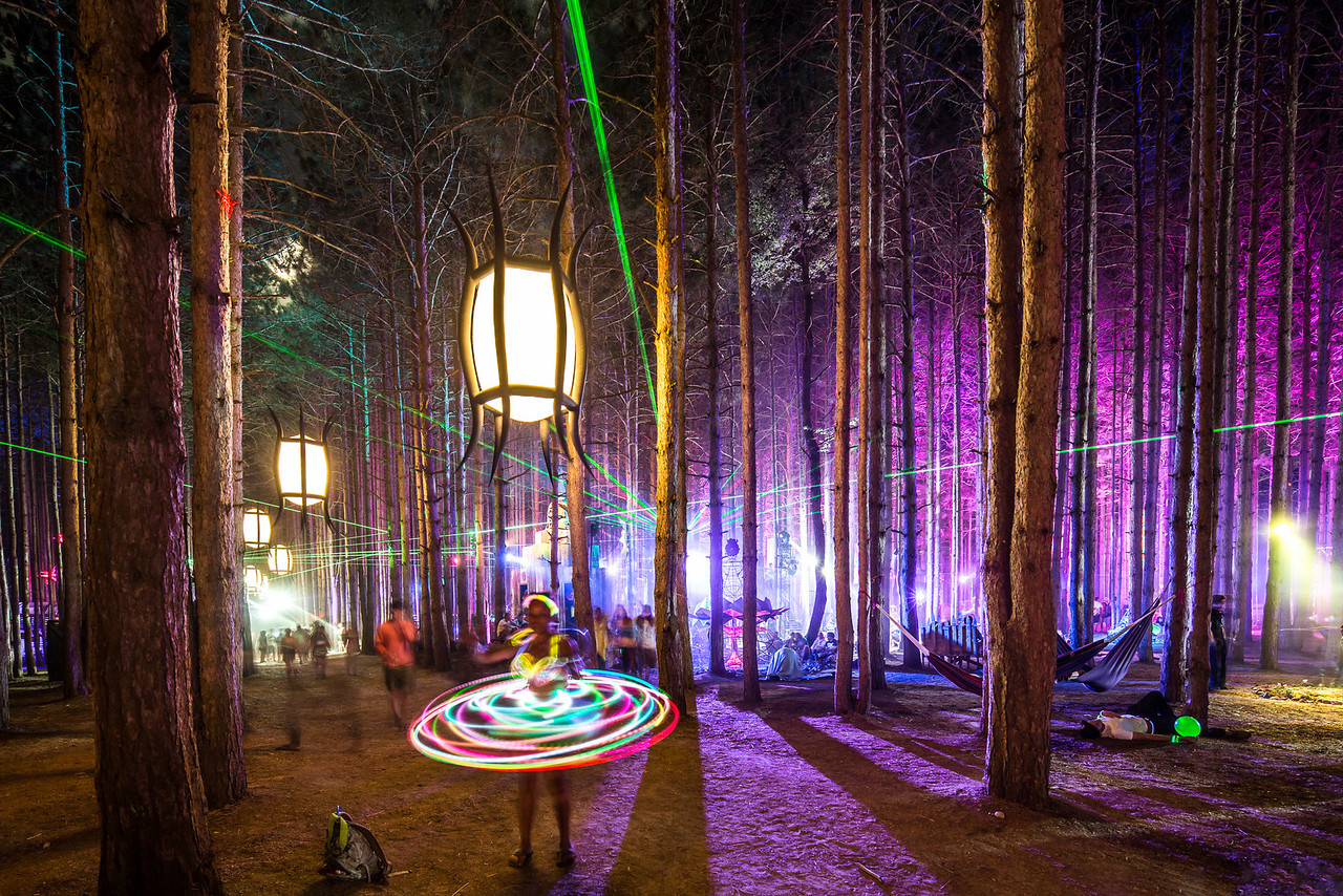 Playing in Sherwood Forest   Electric Forest