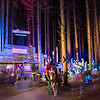Electric Forest Sollun