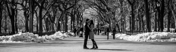 Central Park NYC | Engagement