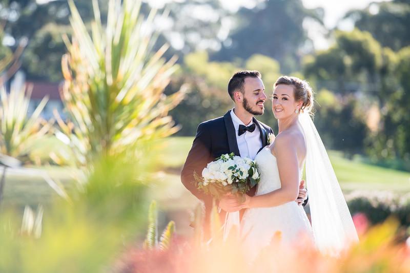 C&D Wedding 0221