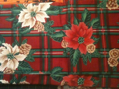 Red and Green Plaid with Pointsettias