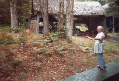 Dorothy with deer in Adirondacks