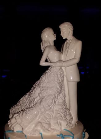 Wedding of Dan and Bree