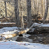 1/25:  Winter along Emigrant Creek