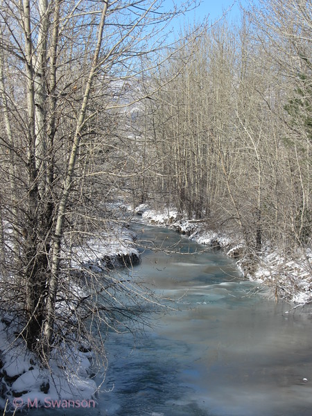 11/13:  A lovely view along Emigrant Creek.