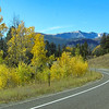 9/22:  Autumn color is blazing among most of the aspens by now.