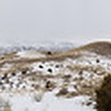 1/10:  Panorama of the house, the driveway and Bullion Bench . Below freezing overnight again so the patchy snow is not melting away.