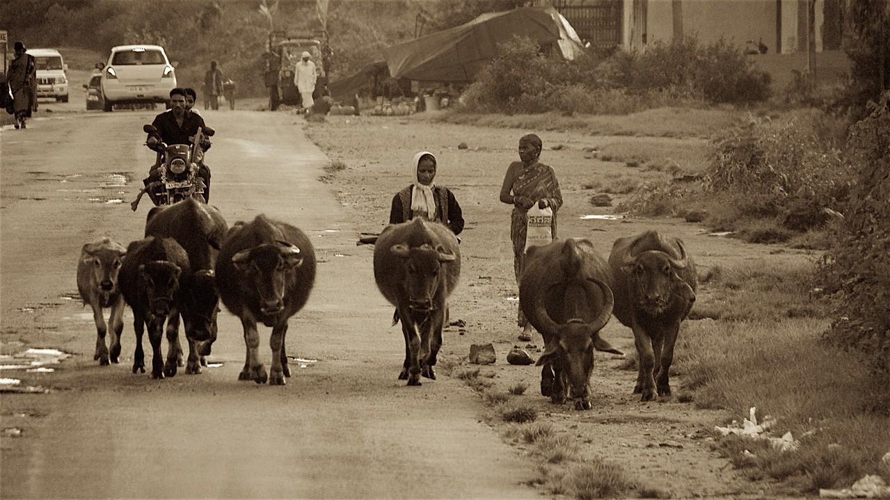 Karnataka, India