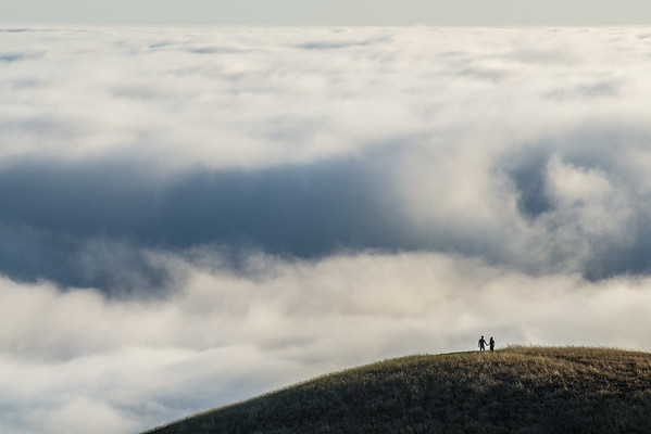 Mt. Tamalpais III