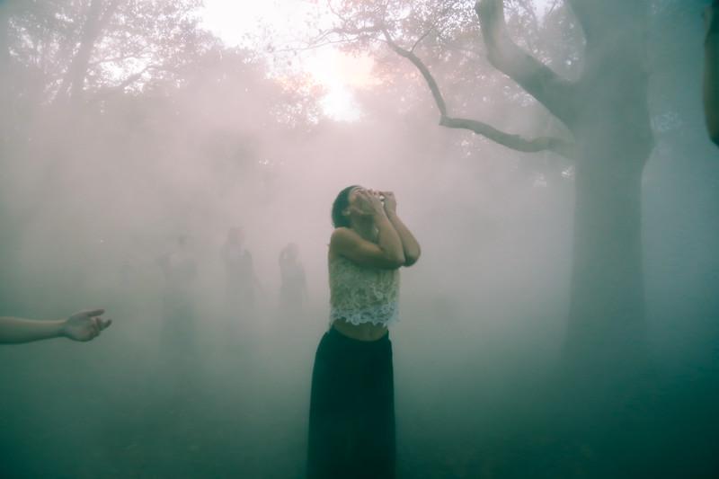 fogxflo