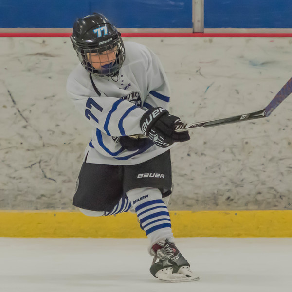 This image is of junior hockey action and can be viewed in the Game Shots gallery.  All images in the sports galleries are not for sale.<br /> <br /> Please contact me on the information form if you would like me to takes some images of your athlete in action.