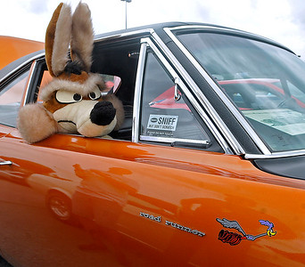 Brad Davis/The Register-Herald A life-sized, stuffed Wile E. Coyote pokes his head out the window of Beckley resident Blaine Toler's 1969 Plymouth Road Runner during the Shade Tree Car Club's annual auto show Sunday afternoon on the parking lot of the Crossroads Mall.