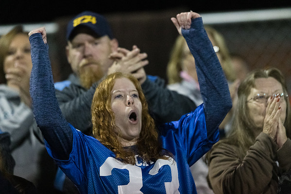 A Meadow Bridge fan supports her team. Chad Foreman for the Register-Herald.