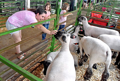 (Brad Davis/The Register-Herald) Oak Hill resident Blanche Anderson reaches in to pet a market lamb as twin sisters Maiya, middle, and Jaeda Criss, 6 look on curiously during opening day at the State Fair Thursday afternoon.