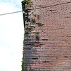 Beckly mayor Rob Rappold wants the building on 227 Prince Street torn down.<br /> (Rick Barbero/The Register-Herald)