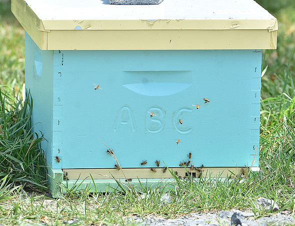 (Brad Davis/The Register-Herald) A hive destined for new beekeepers at the collective's new central location at Camp Lightfoot Saturday afternoon.