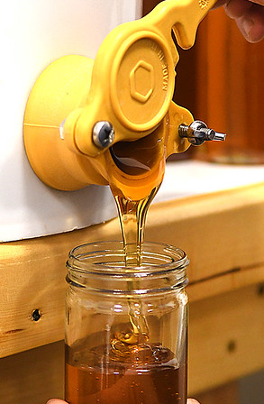 12 oz jars are filled up with honey by Appalachian Headwaters at Camp Waldo in Hinton<br /> (Rick Barbero/The Register-Herald)
